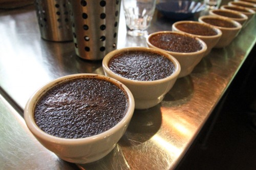 2013_Counter_Culture_Cupping_06