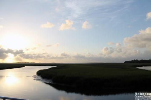 Amelia_Island_Marshland14