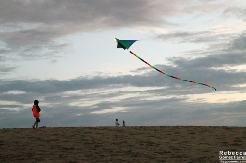 2013_Outer_Banks_030