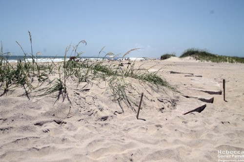 2013_Outer_Banks_087