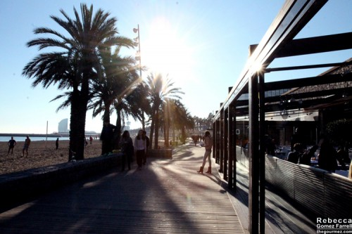 2014_Barcelona_657