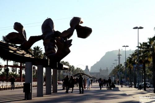 2014_Barcelona_679