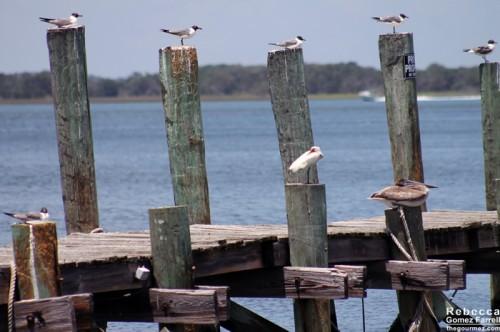 Fernandina_Beach_19