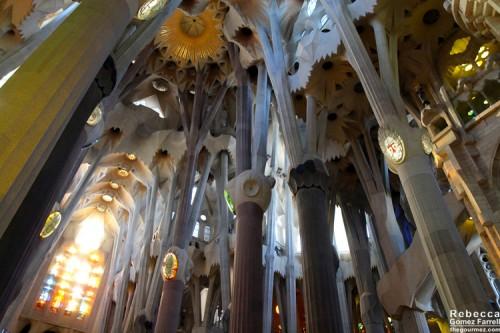 2014_Barcelona_241