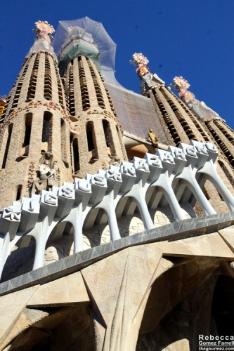 2014_Barcelona_291