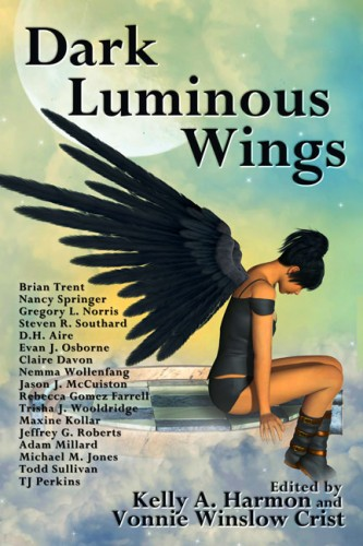 dark luminous wings rebecca gomez farrell